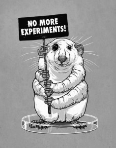Rat with sign reading 'No More Experiments'